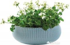 Горшок для растений Keter Cozies L Бирюзовый (7290106929678)