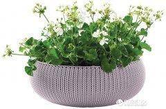 Горшок для растений Keter Cozies L Сиреневый (7290106929654)