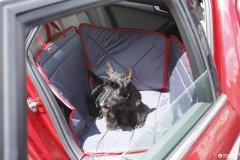 Гамак для перевозки собак в автомобиле ТрендБай 3053 Доггин Доггин Серый (4812960000183)