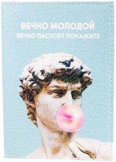 Обложка для паспорта Passporty KRIV256 Разноцветная (2900000133150)