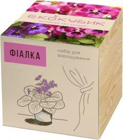 Набор для выращивания Экокубик Фиалка (2000992392808)