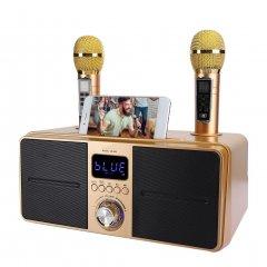 Система Караоке бездротова SDRD SD-309 на два мікрофони і з колонкою + Bluetooth 4.2 та підтримка 3D стерео, 30 Вт Золотистий