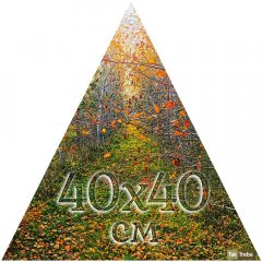 Друк на трикутному бавовняному полотні 40х40 см Ra