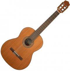 Гитара классическая Salvador Cortez CC-22 (17-2-39-14)