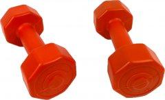 Гантели для фитнеса Neo Sport 1 кг 2 шт (NS1KGХ2)