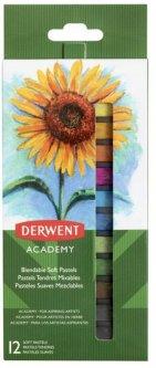 Набор сухой пастели Derwent Academy Soft Pastels 12 цветов (2302397)