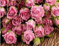 Картина по номерам Bookopt Розовые розы 50х40 см (bk_1224) (2252523152010)