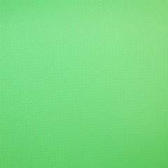 Фон виниловый Savage Infinity Vinyl Chroma Green 1.52 x 2.13 м (V46-0507)