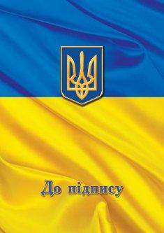 Папка специальная Скат Флаг на подпись А4 полиграфия Сине-Желтая (ПП-1ф)