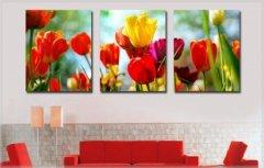 Картина модульная по номерам Babylon Садовые тюльпаны 50*150 см 3 модуля (в коробке) арт.DZ093