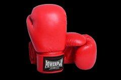 Перчатки боксерские PowerPlay 3004 14 унций Red (PP_3004_14oz_Red)
