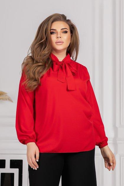 Блуза Modnicy 0403,18 56-62 - изображение 1