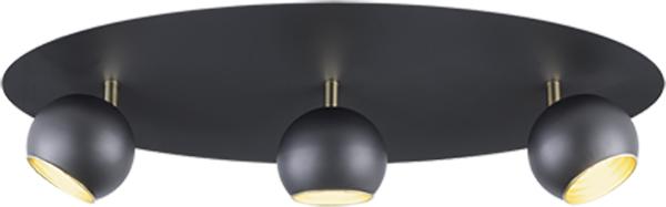 Потолочный светильник Trio Dakota (804600332) - изображение 1