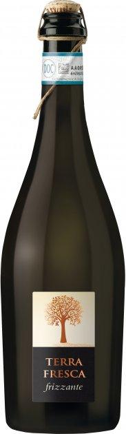 Вино игристое Terra Fresca Spago Frizzante белое сухое 0.75 л 8.5% (8008900008739) - изображение 1