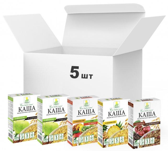 Упаковка каш Терра Mixed Fruit Porridge Vegan 190 г х 5 шт. (4820015737007) - зображення 1