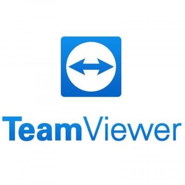 Системная утилита TeamViewer TM Business Subscription Annual (S321) - изображение 1