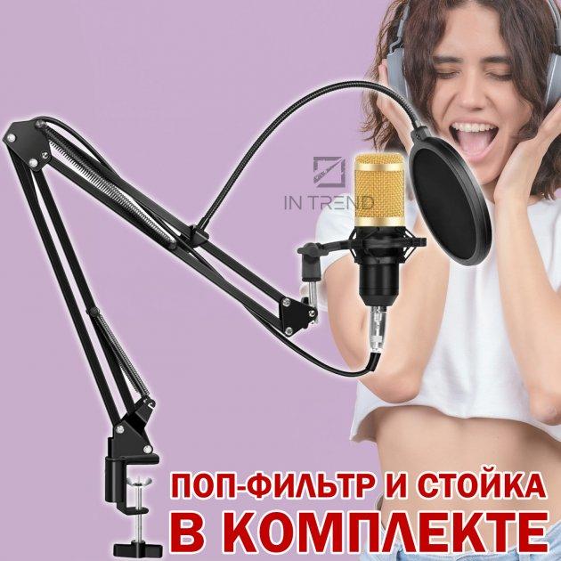 Студійний конденсаторний мікрофон для звукозапису Music D. J. M-800 – кращий бюджетний професійний студійний конденсаторний usb мікрофон для студійного запису голосу вокалу – Висока чутливість мікрофона - зображення 1