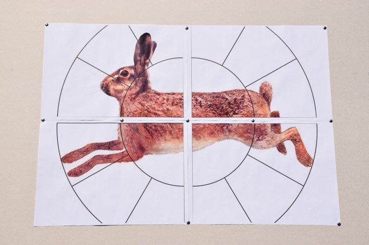 """Мішень Сателіт 16-ти дольная """"Заєць"""" А1(А3) 96 аркушів колір (126) - зображення 1"""