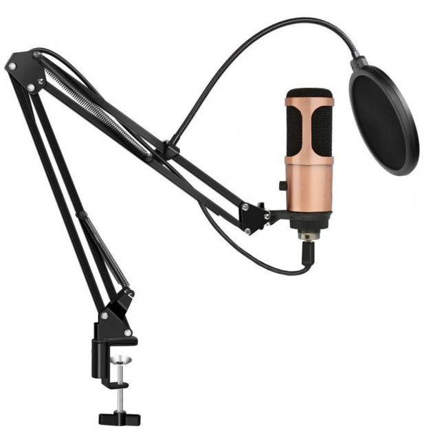 Студійний конденсаторний мікрофон зі стійкою і вітрозахистом Music D. J. M-900 USB Bronze - зображення 1