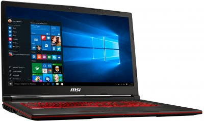Ноутбук MSI GL73 8RE (GL738RE-696DE)