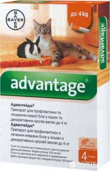 Краплі Bayer Адвантейдж 40 від заражень блохами для котів і кошенят до 4 кг 4 піпетки (4007221031734/4007221046387)