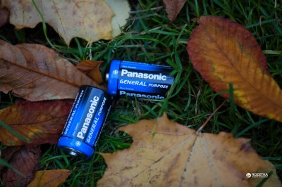 Батарейки Panasonic General Purpose угольно-цинковые D (R20) пленка, 2 шт (R20BER/2P)