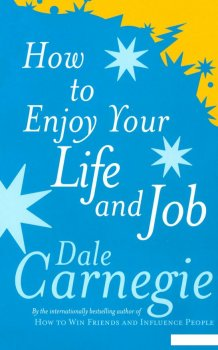 How to Enjoy Your Life and Job (935161)