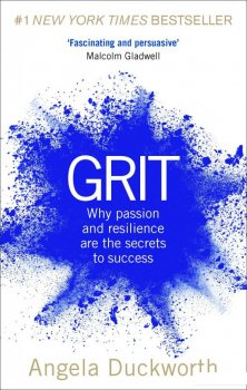 Grit: Why passion and resilience are the secrets to success (951870)