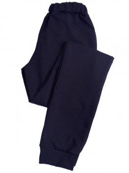 Спортивні штани Пані Яновська БФ-03 Темно-синій