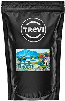 Кофе в зёрнах Trevi Арабика Никарагуа Марагоджип 1 кг (4820140040300)