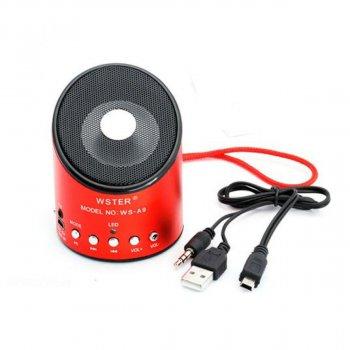 Портативная акустическая система LUX WS-A9 с радио и mp3 (SM00119)