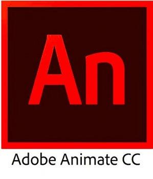 Adobe Animate CC for teams. Ліцензії для комерційних організацій і приватних користувачів, річна підписка на одного користувача в межах замовлення від 1 до 9 (65297552BA01A12)