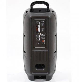 Автономна активна акустична система BIG 220ENCORE два радіо мікрофона, караоке