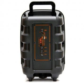 Автономная активная акустическая система BIG 110MAGIC BALL два радио микрофона, караоке