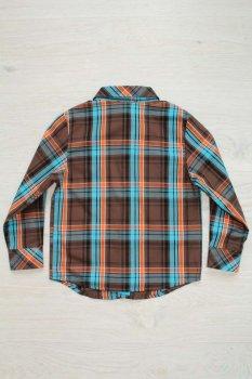 (2127000270634) Рубашка Wojcik Разноцветный