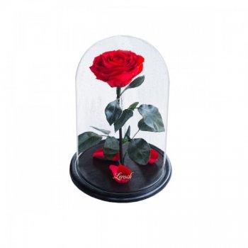 Роза в колбе с LED Большая Красная №A78 (tdx0001030)