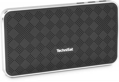 Портативный Bluetooth-динамик TechniSat BLUSPEAKER FL 200 черно-серый (0000/9113)