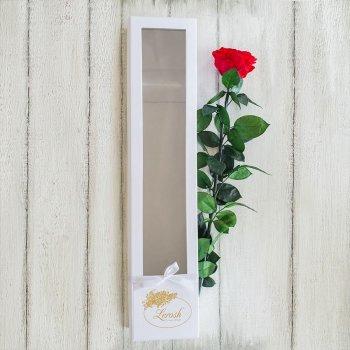 Стабилизированная долгосвежая роза в коробке Lerosh - Premium, 60 см, Красный
