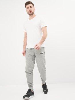 Спортивні штани Puma Ess+ 2 Col Logo Pants 58676803 Medium Gray Heather