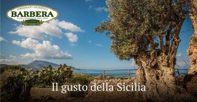 Оливковое масло Barbera Extra Virgin Biologico органическое 1 л (8002591906169)