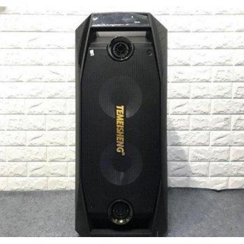Портативна акустическа система з 2ма бездротовими мікрофонами 3000Вт з світломузикою Temeisheng (TMS 802)Чорна