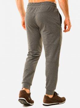 Спортивные штаны DEMMA 786 Серые