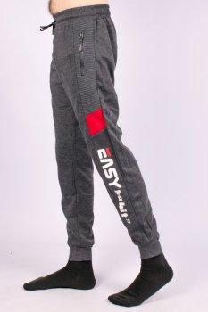 Штани спортивні чоловічі з манжетами Fashion WK-9651-1