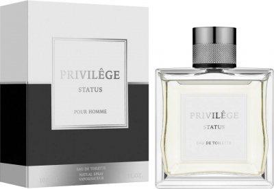 Туалетная вода для мужчин Art Parfum Privilege Status Аналог Cd Dior Sport 100 мл (3770004118847)