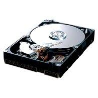 "Жорсткий диск Samsung Spinpoint T 500ГБ 7200об/м 16МБ 3.5"" SATA II (HD501LJ)"