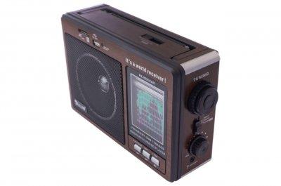 Радіоприймач Golon Black (RX-9966UAR)
