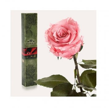 роза долгосвежая рожевий кварц 7 карат (середній стебло)
