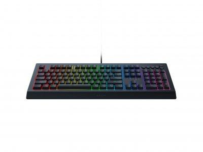 Клавиатура Razer Cynosa V2 (RZ03-03400700-R3R1)