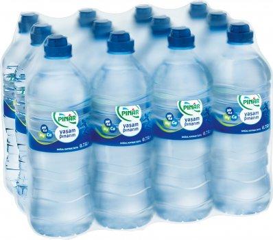 Упаковка воды природной негазированной Pinar 0.75 л х 12 бутылок (8690525022001)