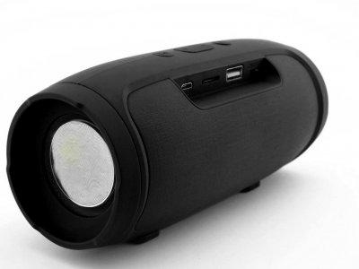 Портативная Bluetooth колонка T&G Portable Speaker MINI, c функцией громкая связь, FM радио, черная
